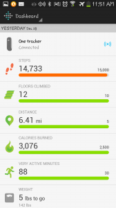Fitbit is a tool that keeps you accountable for your movement.